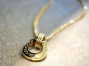 Horeseshoe Amulet Laurel