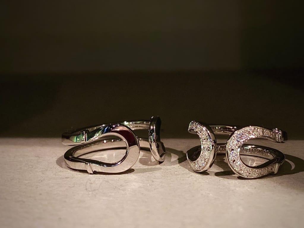 Double Horseshoe Ring