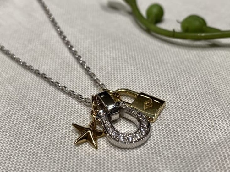 hoeseshoeAmuletNecklace チャーム重ね付け