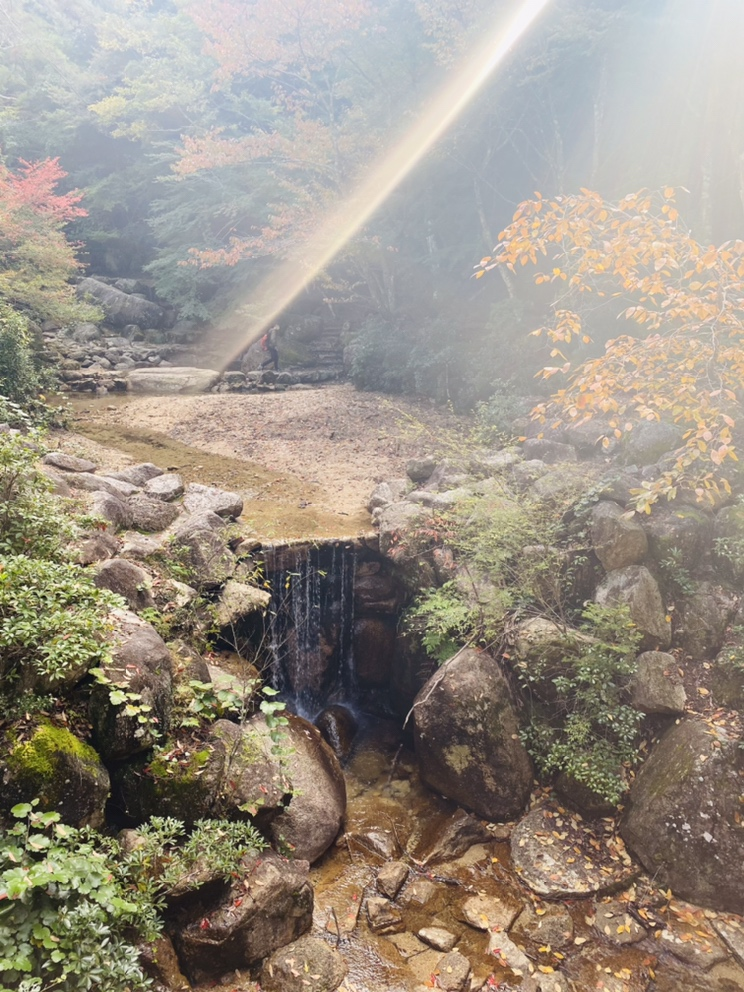 広島 紅葉公園