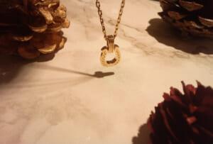 Horseshoe Amulet Laurel